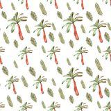Tropical pattern fern, palm royalty free stock image
