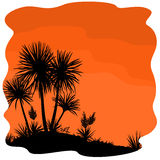 Palm Tree and Plants Yucca Silhouettes. Tropical Palm Trees and Yucca Plants Black Silhouettes on Orange Background. Vector stock illustration