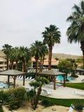 Palm Tree Resort stock image