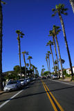 Palm tree road. Palm trees lining a road in California Stock Image