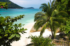 Palm tree and rocks on white sand beach at Pulau Perhentian, Mal. Relax on a deserted beach in an island of Tropical paradise. White sand beach with huge stones Stock Photos