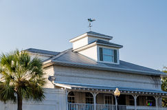 Palm Tree by Roof and Cupola Stock Images