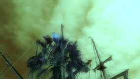 Palm tree and a sailing boat against the background of a stormy sky. Palm tree and a sailing frigate against the background of a stormy sky stock video