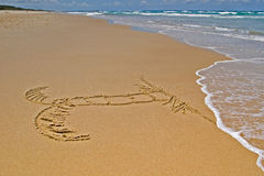 Palm Tree in sand. Palm tree drawn in the sand at the beach Stock Photography
