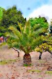 Palm tree in the sand with other trees in watercolor Royalty Free Stock Images