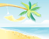 Palm tree by the sea Stock Image