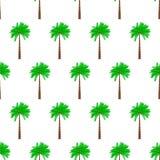Palm tree seamless pattern Stock Photography