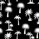 Palm Tree Seamless Pattern stock illustration