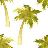 Palm tree seamless Stock Photo