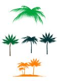 Palm tree set Stock Photography