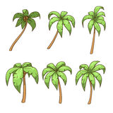 Palm tree set vector illustration Royalty Free Stock Photo