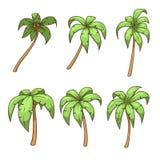 Palm tree set vector illustration Royalty Free Stock Photo