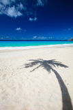 Palm tree shadow on beach. Palm tree shadow on tropical white sand beach Stock Images
