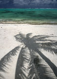 Palm Tree Shadow on Beautiful Beach Royalty Free Stock Photography