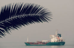 Palm Tree and Ship on Black Sea Royalty Free Stock Images