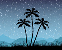 Palm tree Silhouette. A silhouette of a palm tree with a lot of stars vector illustration