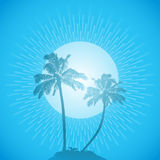 Palm tree silhouette background blue Royalty Free Stock Photos