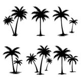 PALM TREE SILHOUETTE SET royalty free illustration