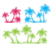 Palm tree silhouettes Stock Photography