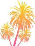 Palm tree silhouettes isolated on white Royalty Free Stock Image