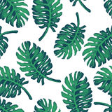 Palm Tree Sketch Pattern Royalty Free Stock Images