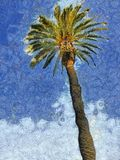 Palm Tree & Sky Painting Stock Photos