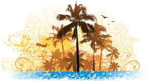 Palm tree summer background Royalty Free Stock Images