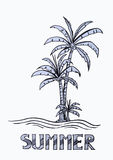 Palm tree in summer background Royalty Free Stock Photos