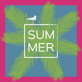 Palm tree. Summer vector background with seagull. Palm tree. Summer vector background with gull Royalty Free Stock Photography