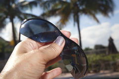 Palm Tree Sun Glasses. Sunglasses by tropical weather pool Royalty Free Stock Photography