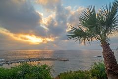 Palm tree and sunset over sea bay Stock Photography