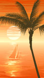 Palm tree on sunset sea background with yacht. Royalty Free Stock Photo