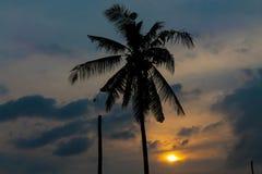 Palm tree sunset silhouette in tropic. Palm trees sunset silhouette at tropical sea resort. beautiful luxury sea beach resort in Tropics, Thailand Stock Photo