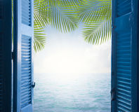 Palm tree with sunshine Royalty Free Stock Photo