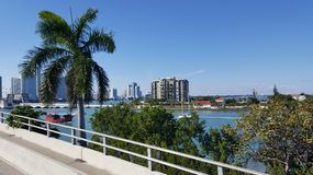 Tropical landscape of Miami tourist coast in a sunny day. Palm tree, travel and tourism in United States, nature and ocean, blue water and sky, buildings in a royalty free stock images