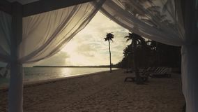 Palm tree on tropical island beach and beautiful Caribbean sea. Dominican Republic.  stock footage