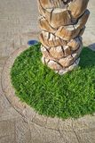 Palm tree trunk highlighted in green garden shrub and outdoor lighting stock photography