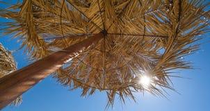 Palm tree umbrella Royalty Free Stock Photo