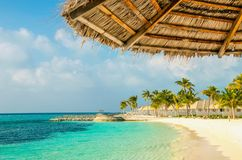 Palm tree umbrellas and nexotic Maldivian sandy beach, Maldives Stock Image