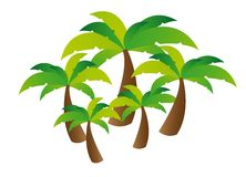 Palm tree vector Stock Photography