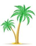 Palm tree vector illustration Stock Photography