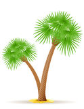 Palm tree vector illustration Stock Photography