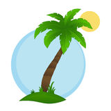 Palm tree on a white background Royalty Free Stock Photos