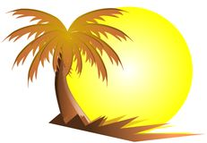 Palm Tree With Sun Isolated Stock Photo