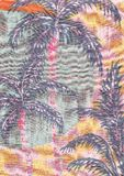 Palm trees. Summer background with palm trees for illustration Royalty Free Stock Images