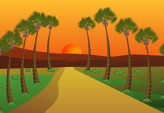 Palm trees. Palm trres and rises the sun Royalty Free Stock Images