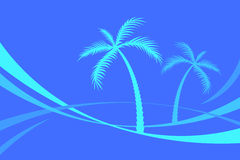 Palm Trees royalty free illustration
