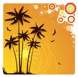 Palm trees. Summer background with palm trees Royalty Free Stock Photo