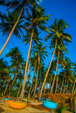 Palm trees against blue sky.Round boats.Vietnam, Mui Ne, Asia Stock Photo