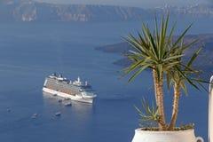 Palm trees against caldera of Santorini Stock Image
